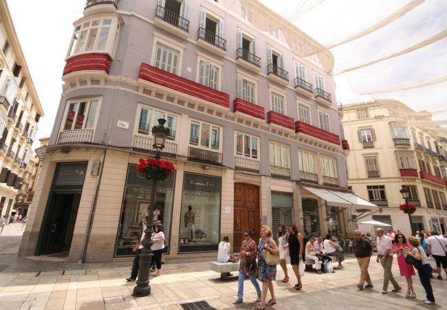 Apartamento en Málaga - Larios C