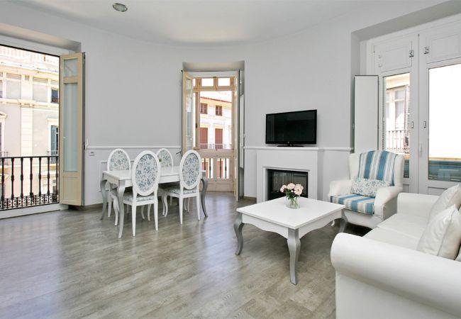 Apartment in Málaga - Larios C