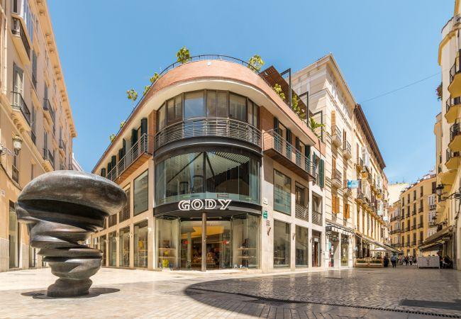 Apartment in Málaga - Larios Strachan II